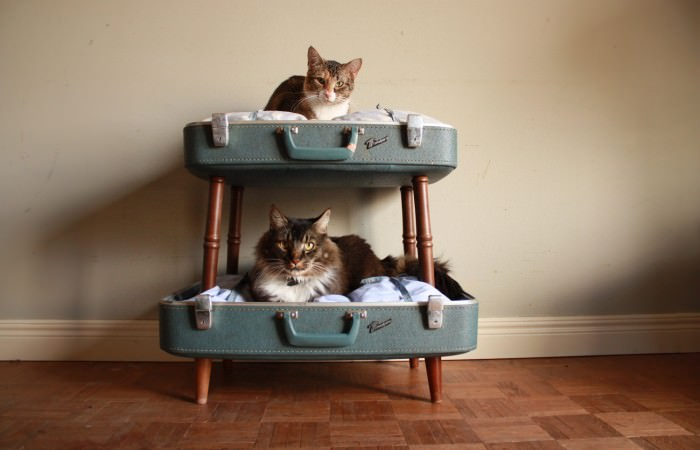 10 Trendy Upcycled Cat Beds Iheartcats Com