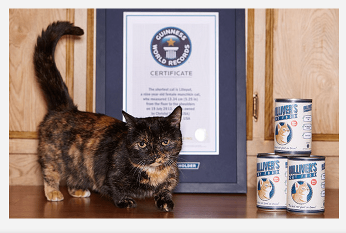 Image source: Guinness World Records