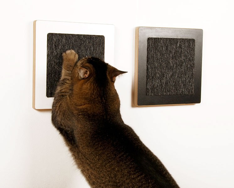 15 diy tips that make living with a cat easier page 2 of 15 - Modern cat scratcher ...