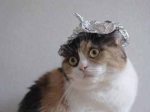 conspiracycat