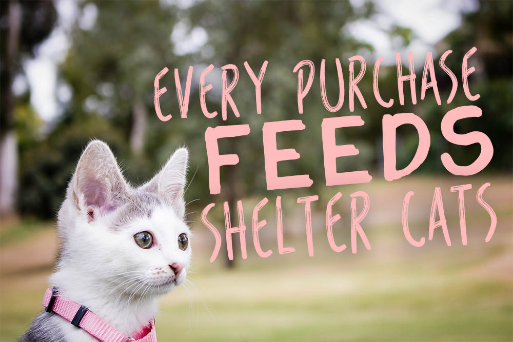 Every Purchase Feeds Shelter Cats! - iHeartCats com
