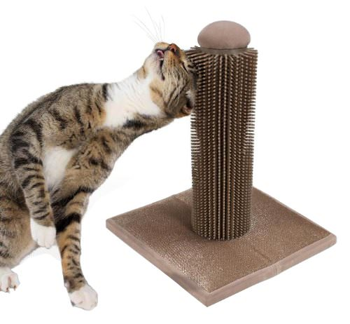 The 9 Best Cat Grooming Tools Iheartcats Com All Cats Matter