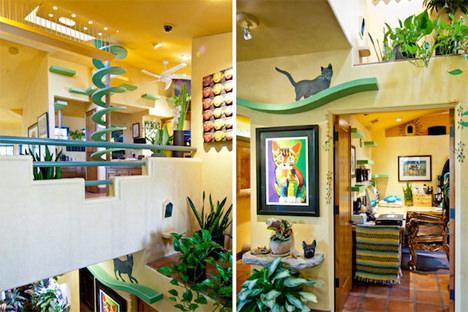 fun-cat-home-interior