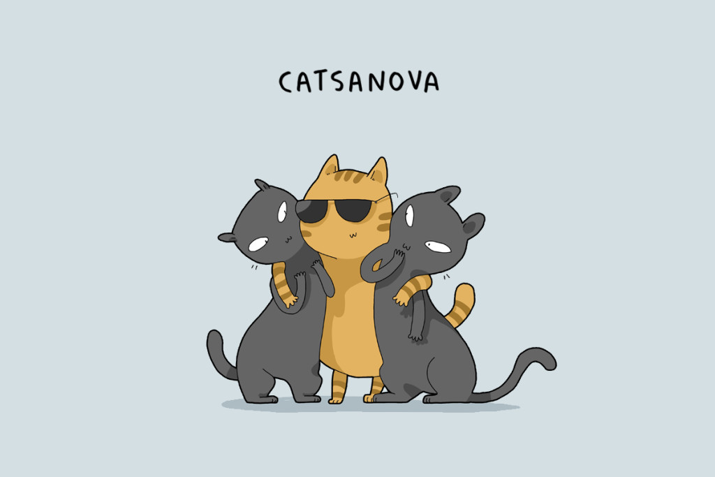 cattypes-008