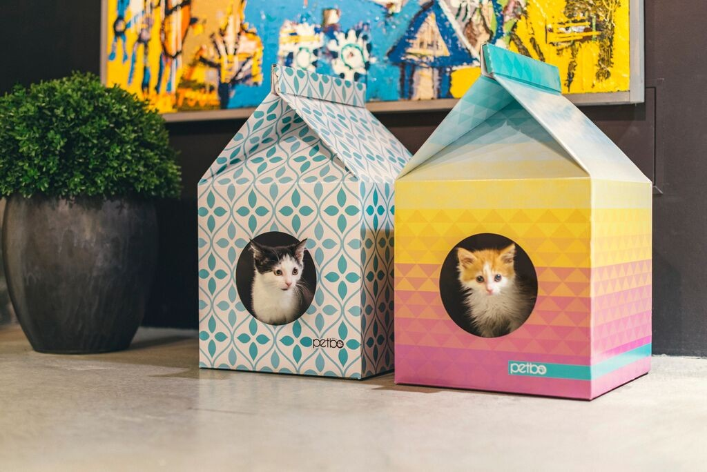 Как из коробки сделать коту домик