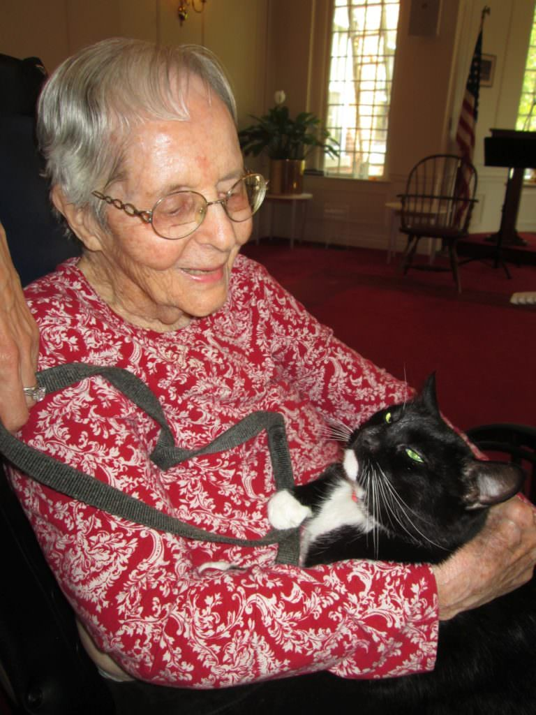 Photo: Nathaniel Witherell resident Mary Leinbach with Boots, atherapycatowned by local volunteer Lisa Wysocki. The Nathaniel Witherell is a short-term rehab and skilled nursing center in Greenwich, CT.