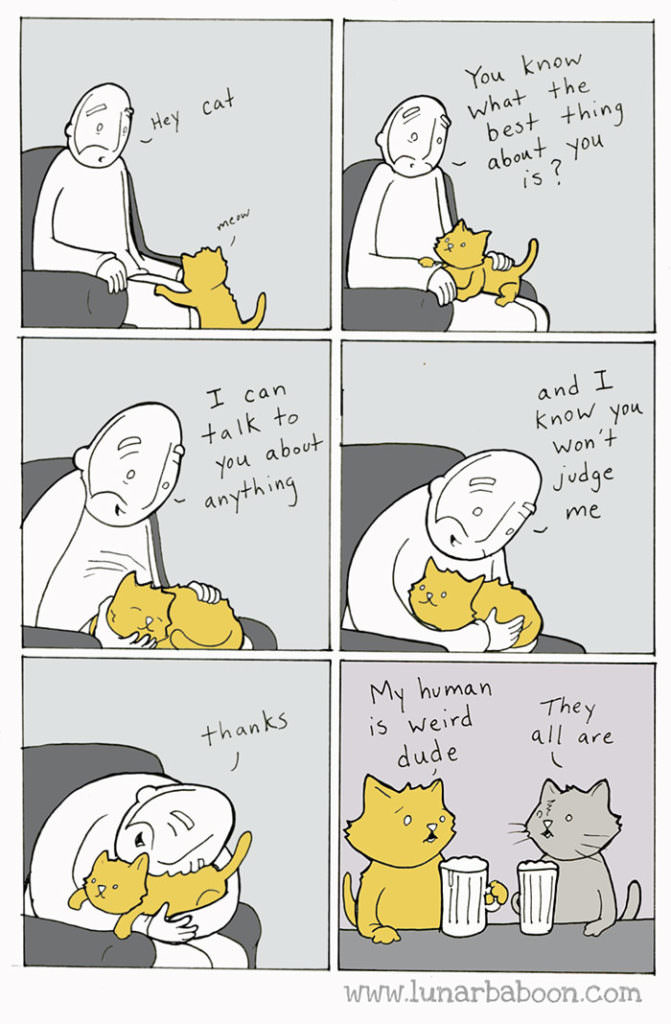cat-comics-lunarbaboon-3