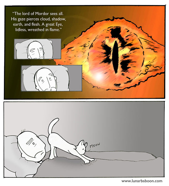 cat-comics-lunarbaboon-5