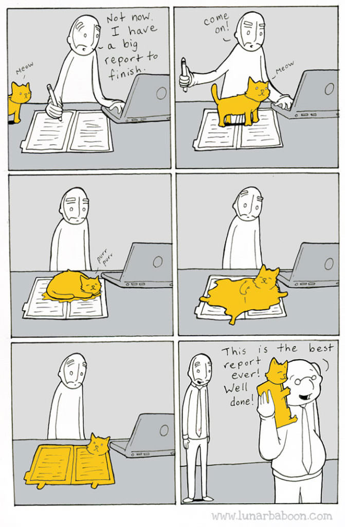 cat-comics-lunarbaboon-7