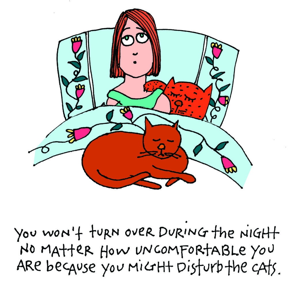 Image source: Women Who Still Love Cats Too Much / hcibooks.com