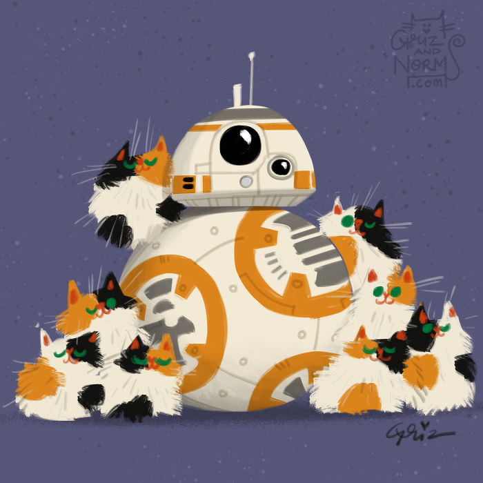 BB8 and Cats