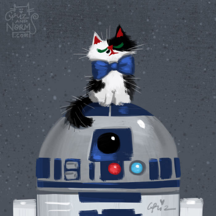 R2D2 and Cat