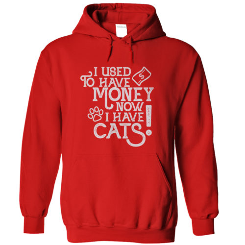 Used To Have Money Hoodie