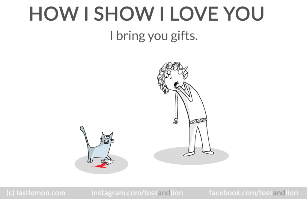 cat_gifts