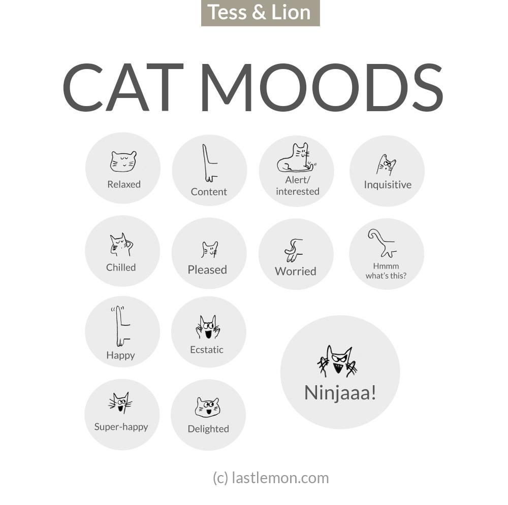 mood_01 copy