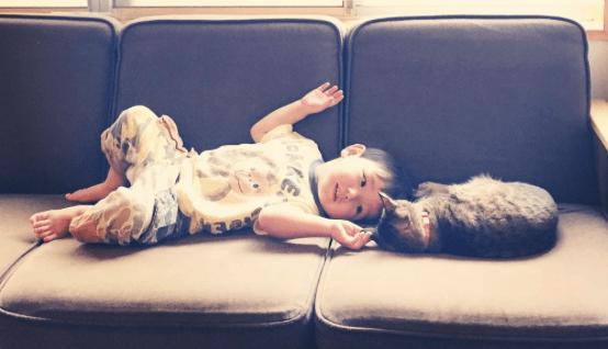 cat admission date 2015