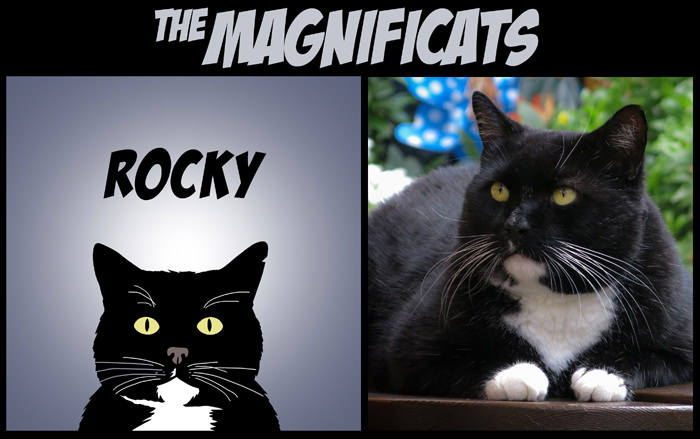 iheartcats 700 px TWOSHOT ROCKY