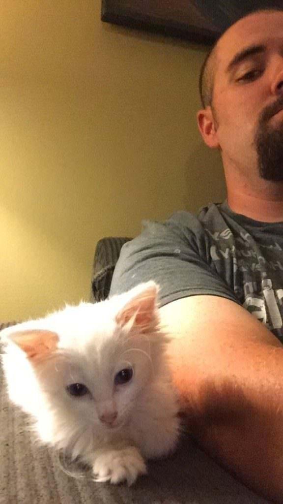 1-Cat-Person