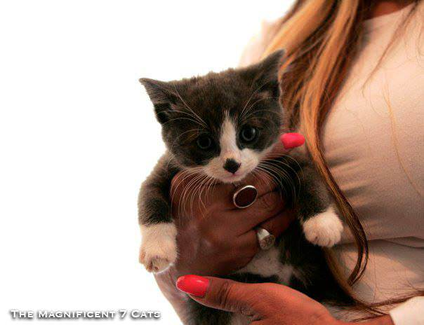 Magnificats iheart 2 Mar 2016 baby 2