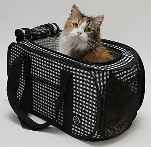 Cat1st @ Amazon
