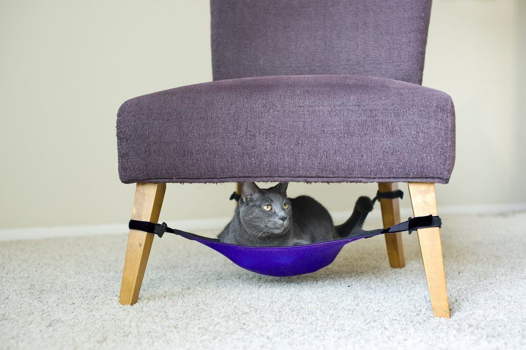 Cat Crib @ Amazon