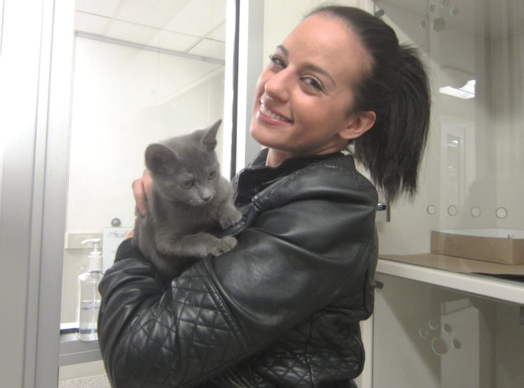NYPD Officer Nicole Piridis of the 90th Precinct with kitten she helped rescue and has now adopted, Dmitry (renamed Apollo), at ASPCA Adoption Center.