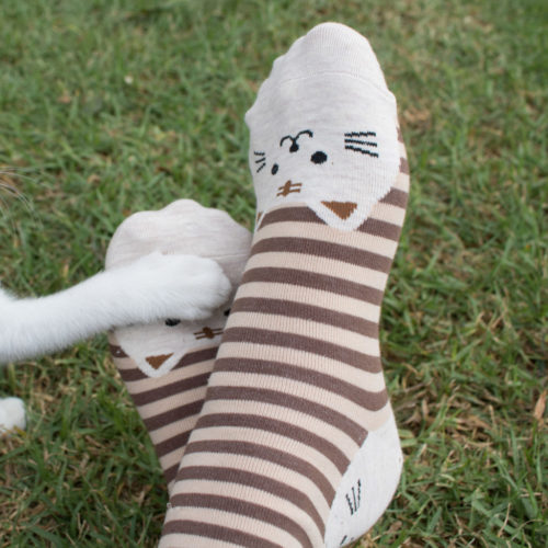 Brown Striped Cat Face Socks