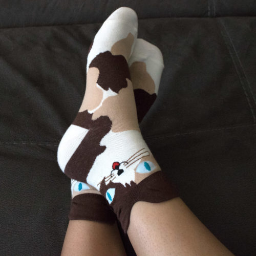 Brown Cat Ears Socks