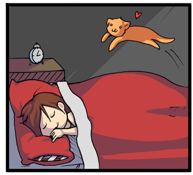 C Adventures Of An Annoying Cat 1