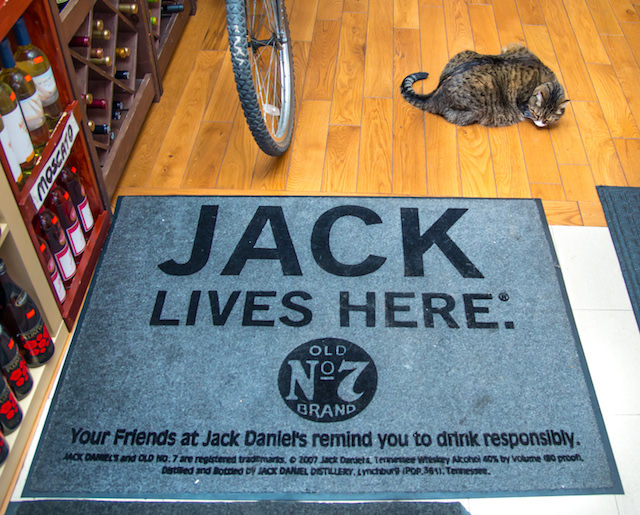 jack-4