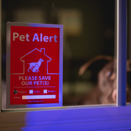 2-Pack Pet Alert Reflective Stickers: Recommended for Every Door & Window of Your Home