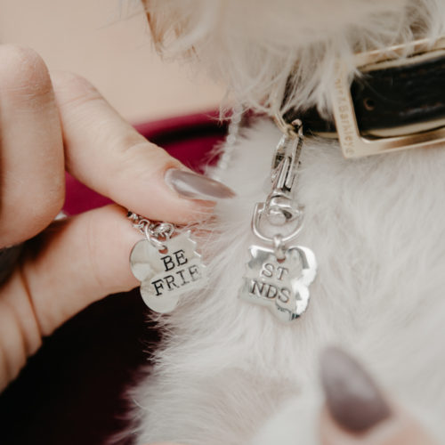 2 Piece Best Friend Necklace and Pet Tag Set