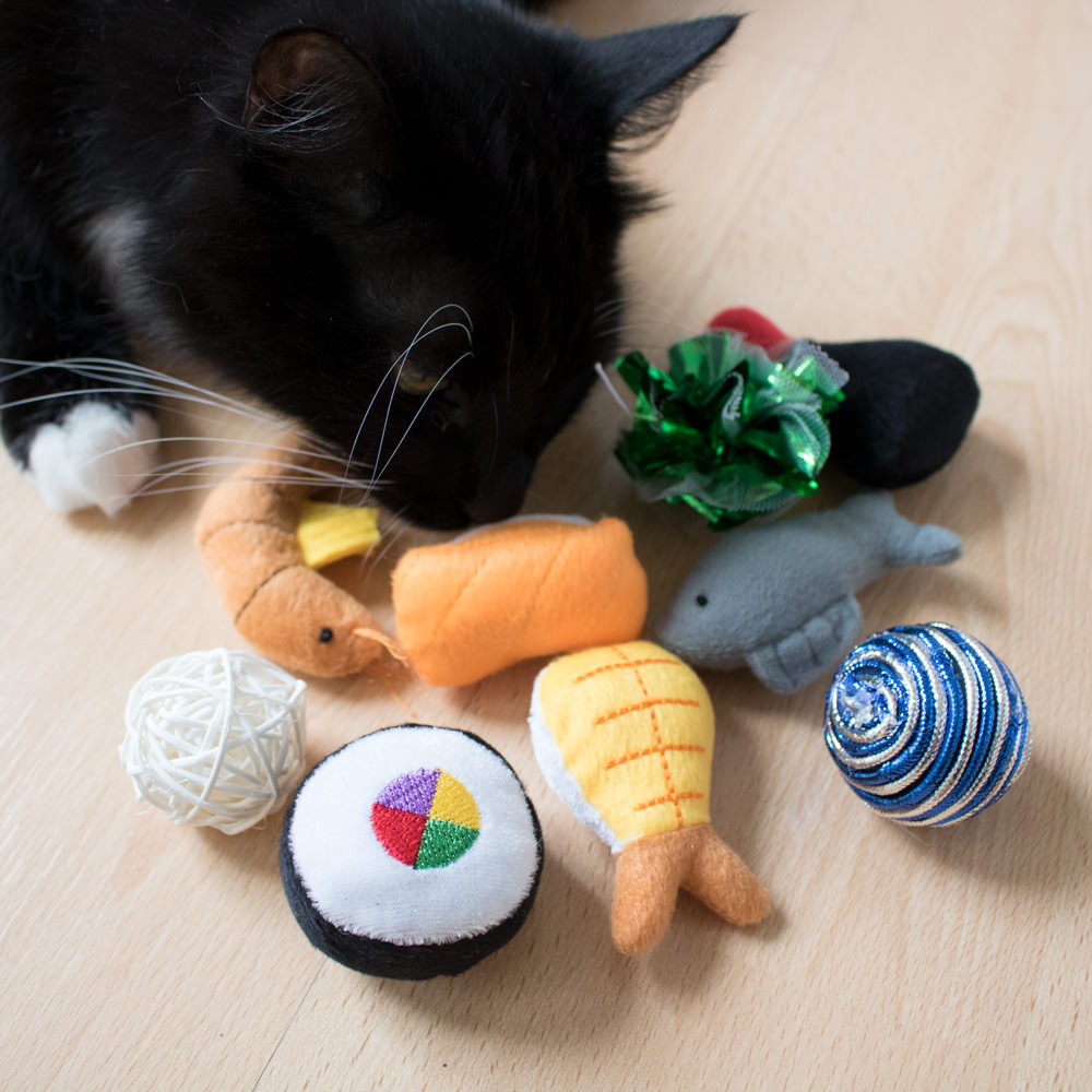 project play™ catnip filled sushi box cat toys (9 pieces