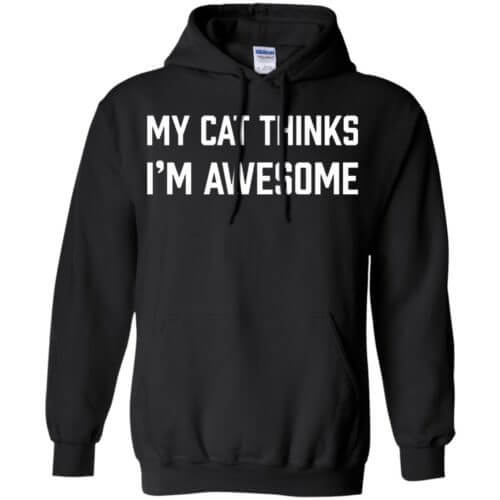 I'm Awesome Pullover Hoodie