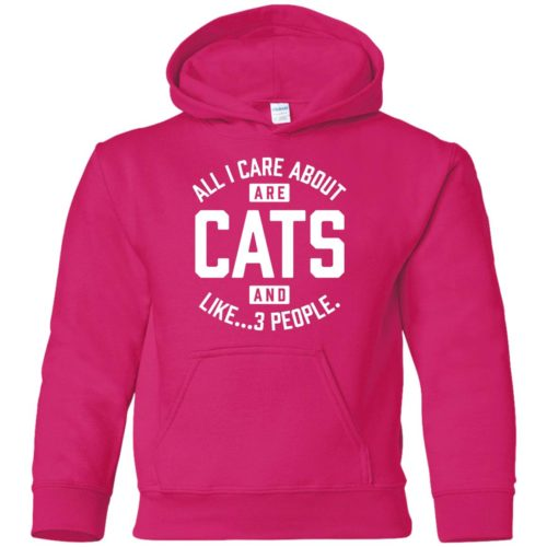 Cats And 3 People Youth Pullover Hoodie