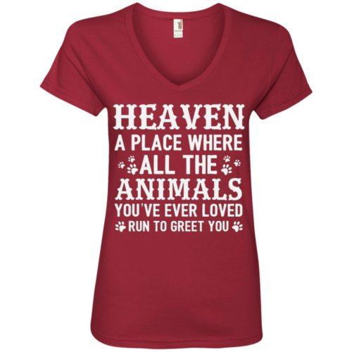 Heaven Ladies' Premium V-Neck