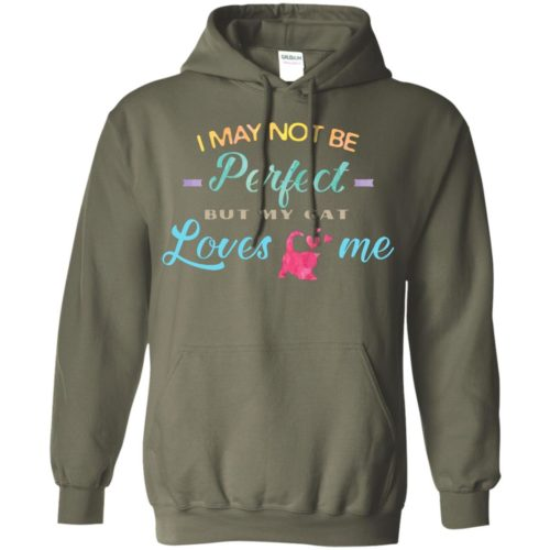 I May Not Be Perfect Pullover Hoodie