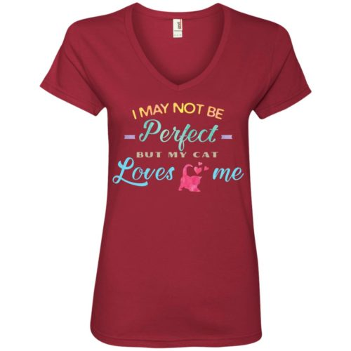 I May Not Be Perfect V-Neck Tee