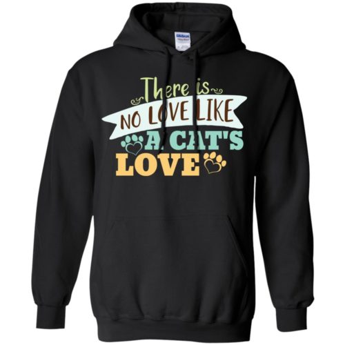 There Is Pullover Hoodie