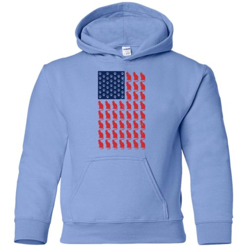 Red Cat Blue Paw Youth Pullover Hoodie