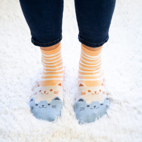 Peach Stripes with Creme and Blue Twin Kitties Socks
