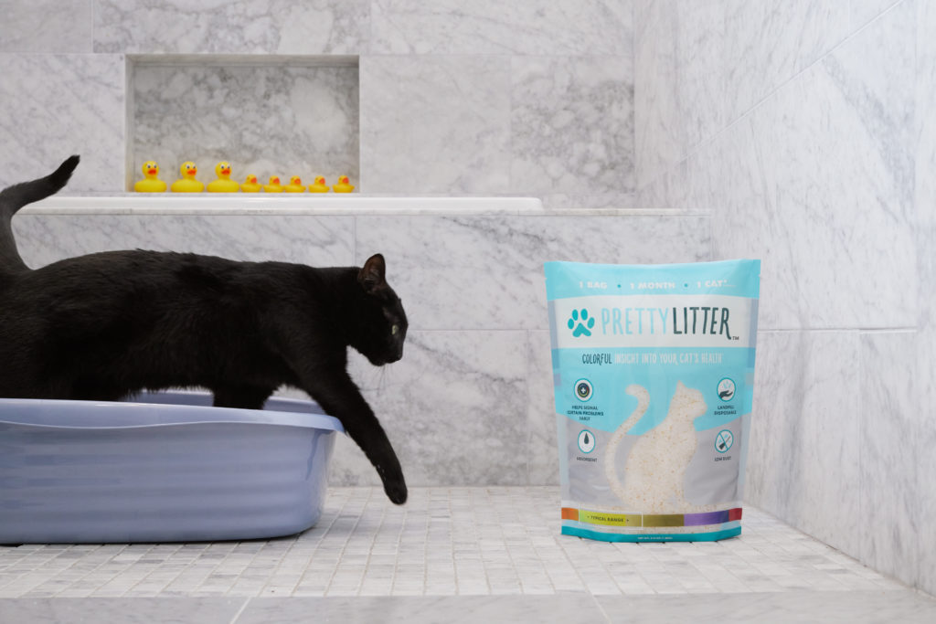 8 Ways PrettyLitter Is Crushing The Cat Litter Competition