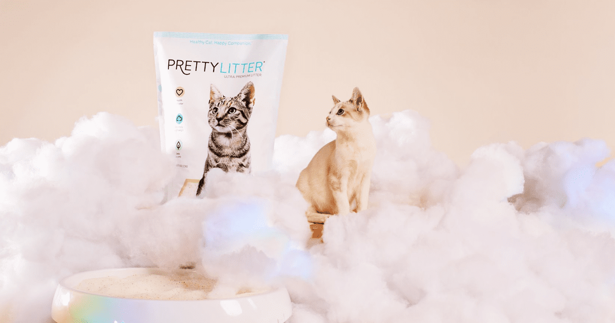 5 Reasons PrettyLitter is the Best Cat Litter