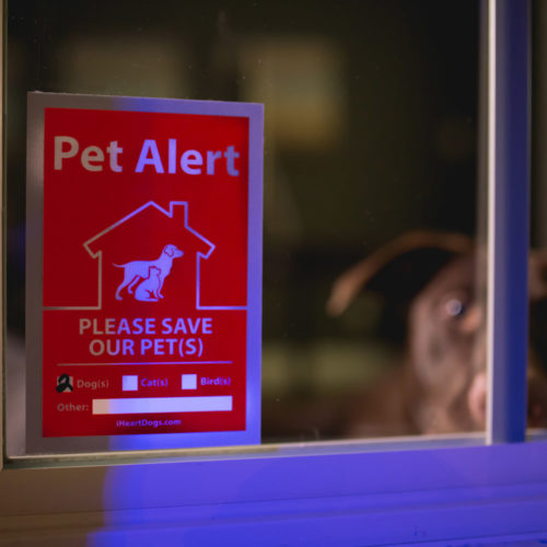 PROMO: 2-Pack Pet Alert Stickers: Recommended for Every Door & Window of Your Home