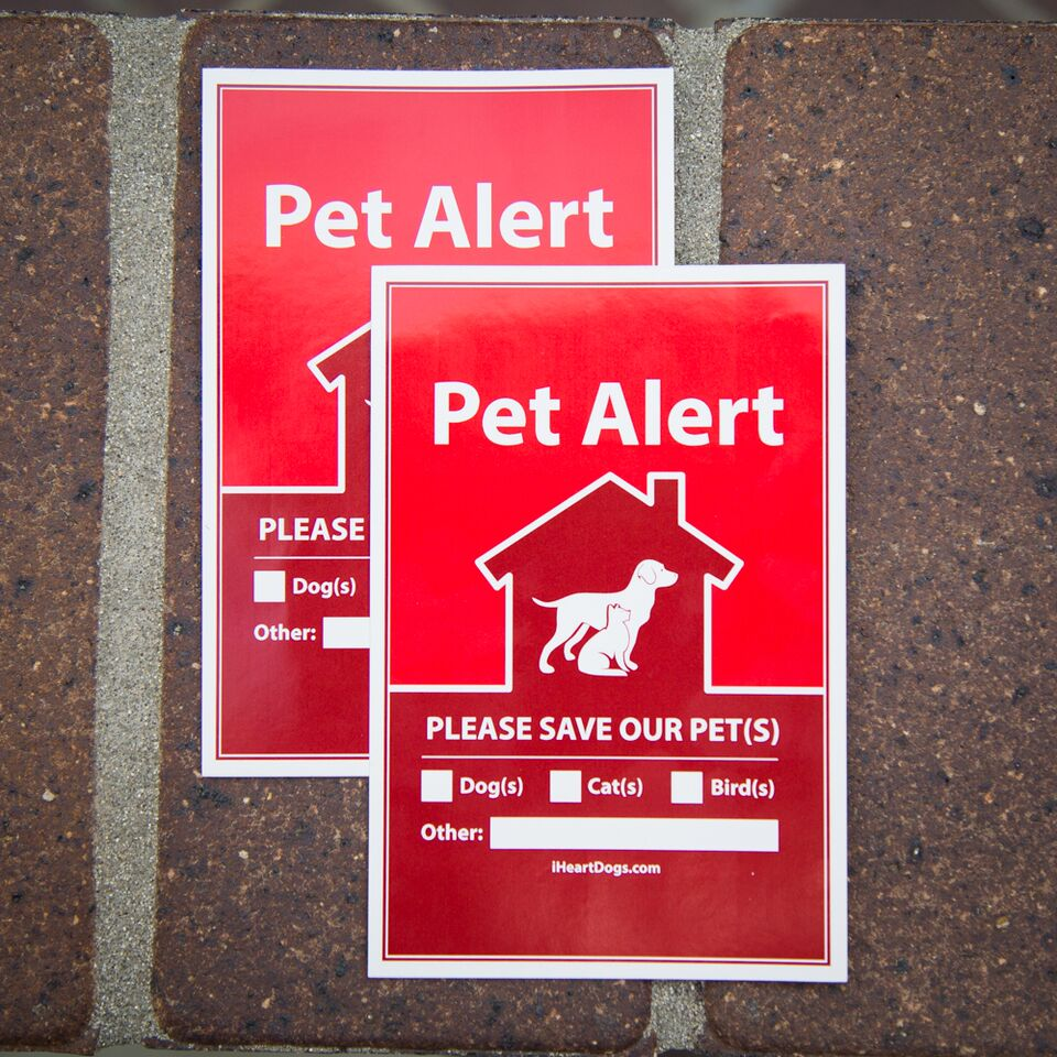 Superb 2 Pack Pet Alert Stickers Recommended For Every Door Window Of Your Home Beutiful Home Inspiration Aditmahrainfo