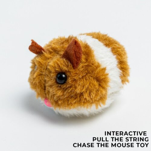 Special Offer! Chubby The Mouse Kitty- Interactive Toy